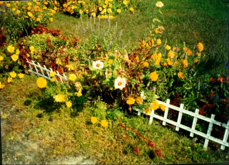 1989 road row-2