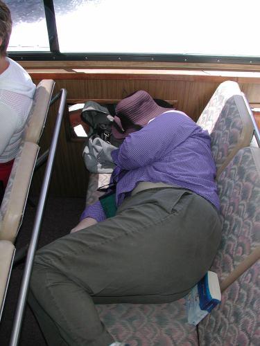 Bus nap