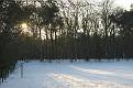 Snow 2010 Almen (6)