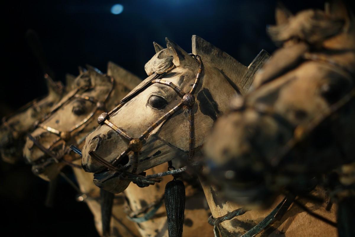 2000 Years ! XIAN Bronze horses ATW1102 DSC01776`10010226`rh1200 TCW Bronze Horses superb 'g