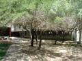 Highschool building2-Hader Ochel