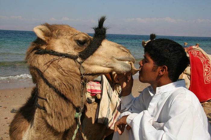 Egypt 2007 (636)