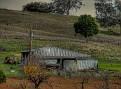 Wellington to Mumbil Farm 011