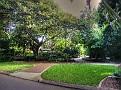 Brisbane Botanic Gardens 011