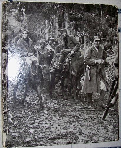 World War II v12 Partisans and Guerillas