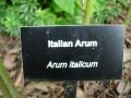 gardens 068