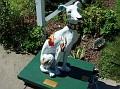 2005 - DOG DAZE - SALVADOG DALI.jpg