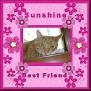 sunshinetjcBest Friend