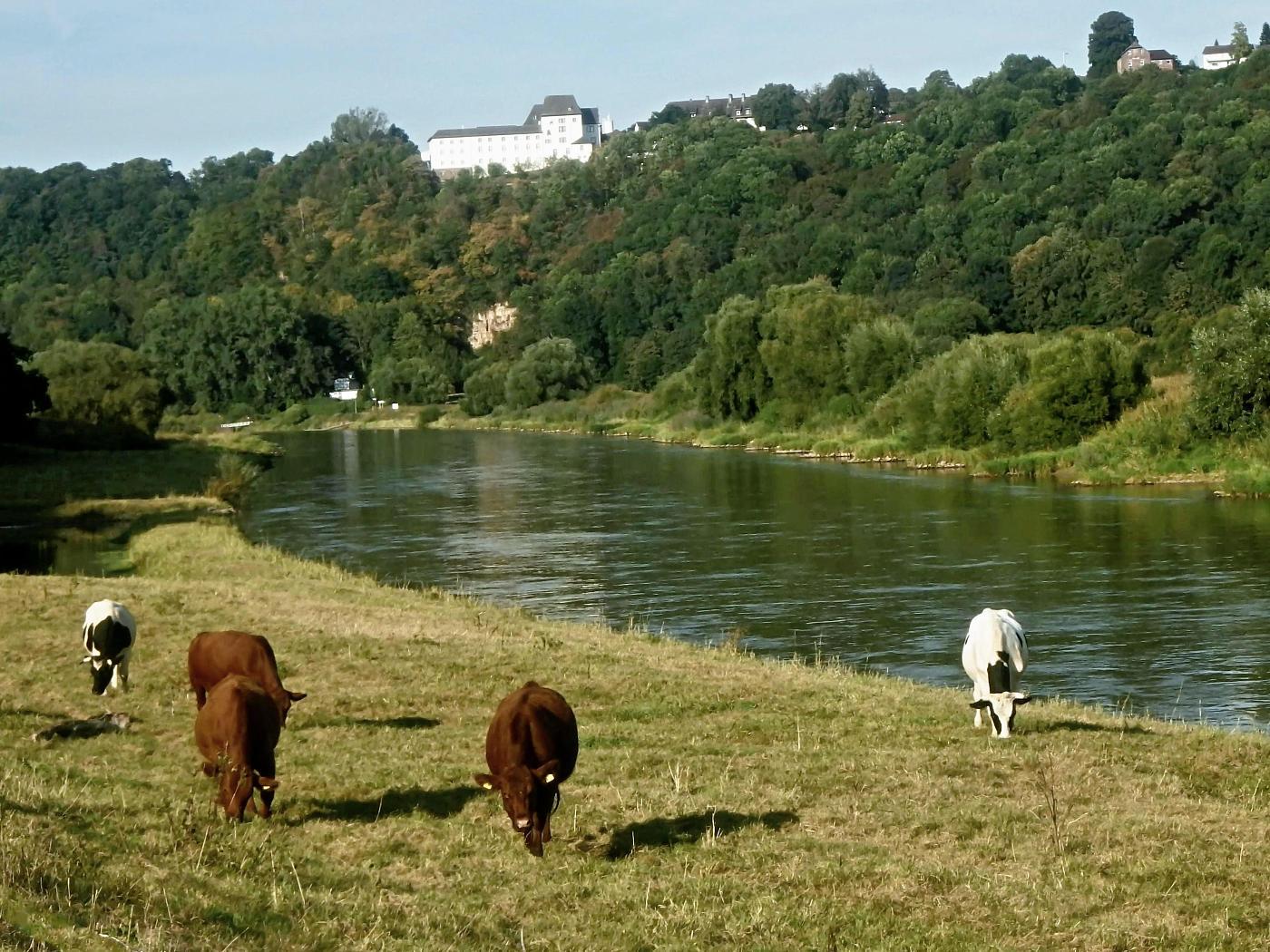 Weser, Fürstenberg