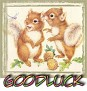 1GoodLuck-cutesquir-MC