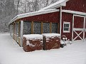 Snow Storm of December 19 2009 (29)