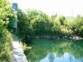 Gallop Canal, Cardinal
