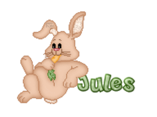 Jules - BunnyWithCarrot