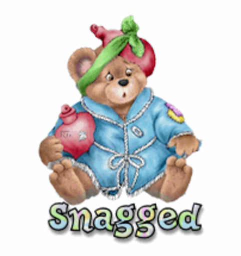 Snagged - BearGetWellSoon