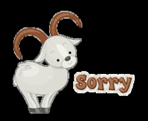 Sorry - BighornSheep