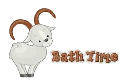 Bath Time - BighornSheep