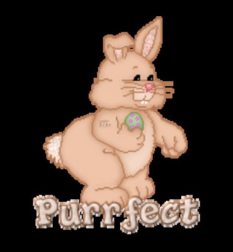 Purrfect - BunnyWithEgg