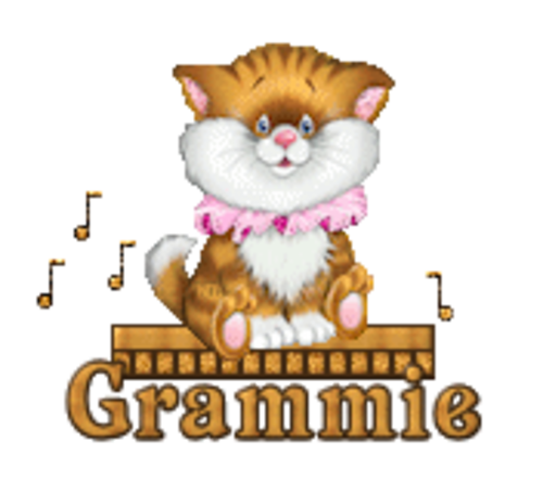 Grammie - CuteKittenSitting