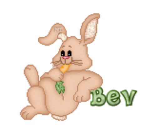 Bev - BunnyWithCarrot