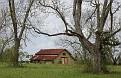 Alabama Barn #4