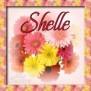 Shelle - Spring