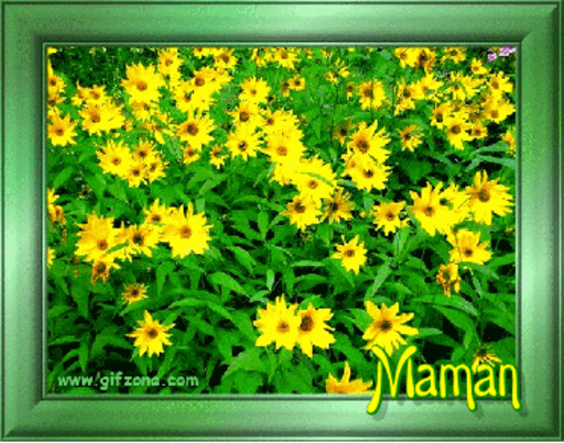 Maman - Field of Daisies-Kari