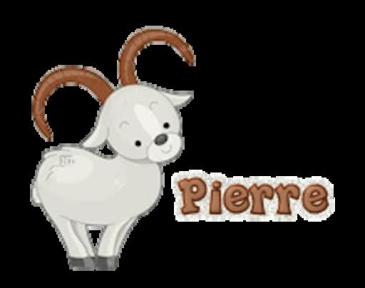 Pierre - BighornSheep