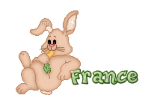 France - BunnyWithCarrot