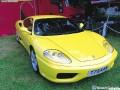 Dreamer Ferrari 51