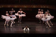 6-15-16-Brighton-Ballet-DenisGostev-687