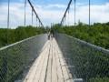 Suspension bridge, Scenic Caves, Collingwood