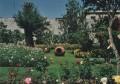 Arequipa 012