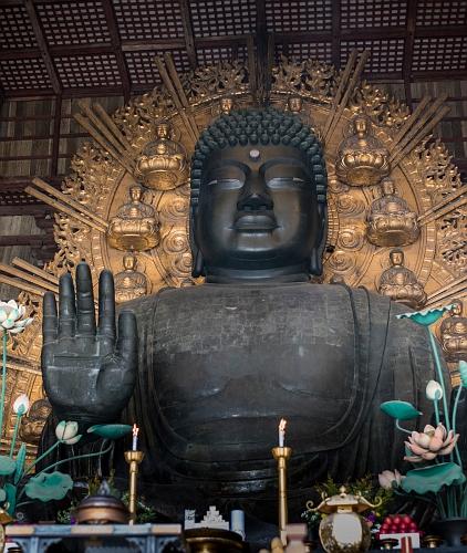 000 nara largebuddha