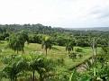 A view of San Cristobal
