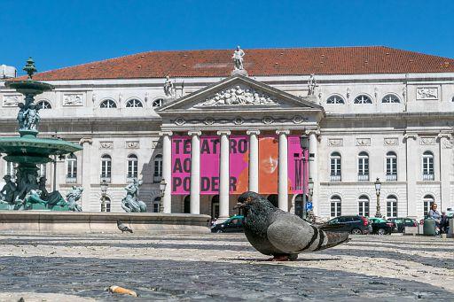 Dona Maria II National Theater