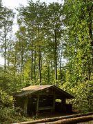 Picknickhütte Barntruper Forst