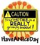 1HaveANiceDay-caution-MC