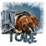 1I Care-blujeanpup