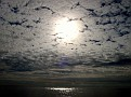 sky plus sun
