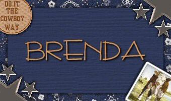 BrendaCowboy1a-vi