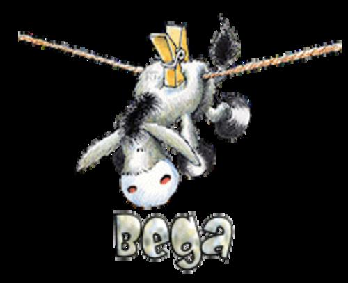 Bega - DunkeyOnline