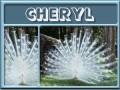 cheryl-gailz0304-albino peacock.jpg