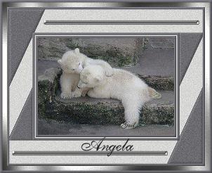 Angela-gailz0207-bearcubs.jpg