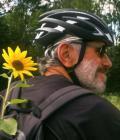 Manfred (Manfred-Tinebor) avatar