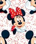 Mickey&MinnieMouse001