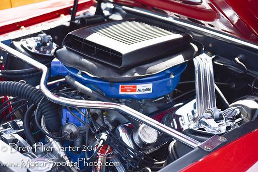 Mustang-2932
