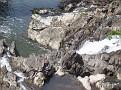 Wappingers Falls