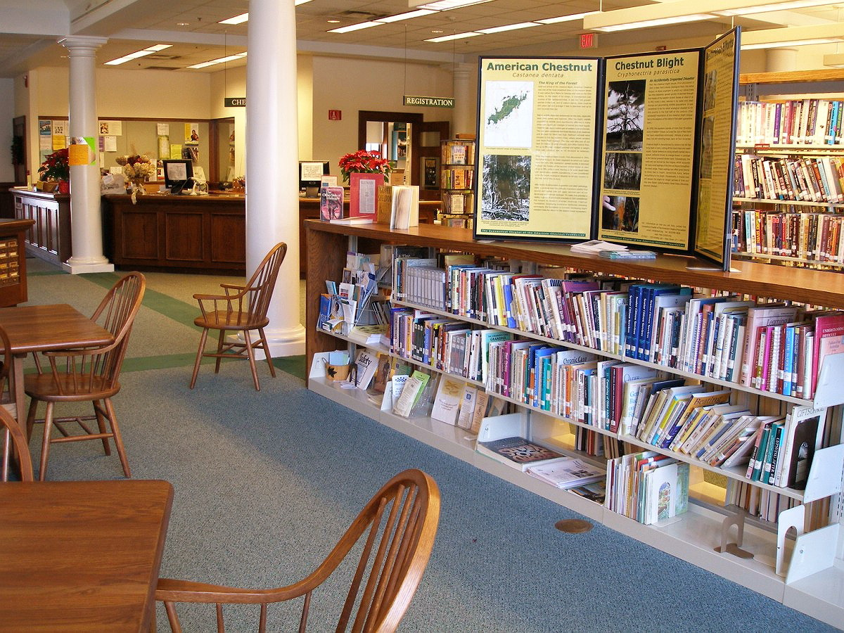 ELLINGTON - HALL MEMORIAL LIBRARY - 06.jpg
