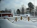 2011 02 17 10 Around the house at Kramsta