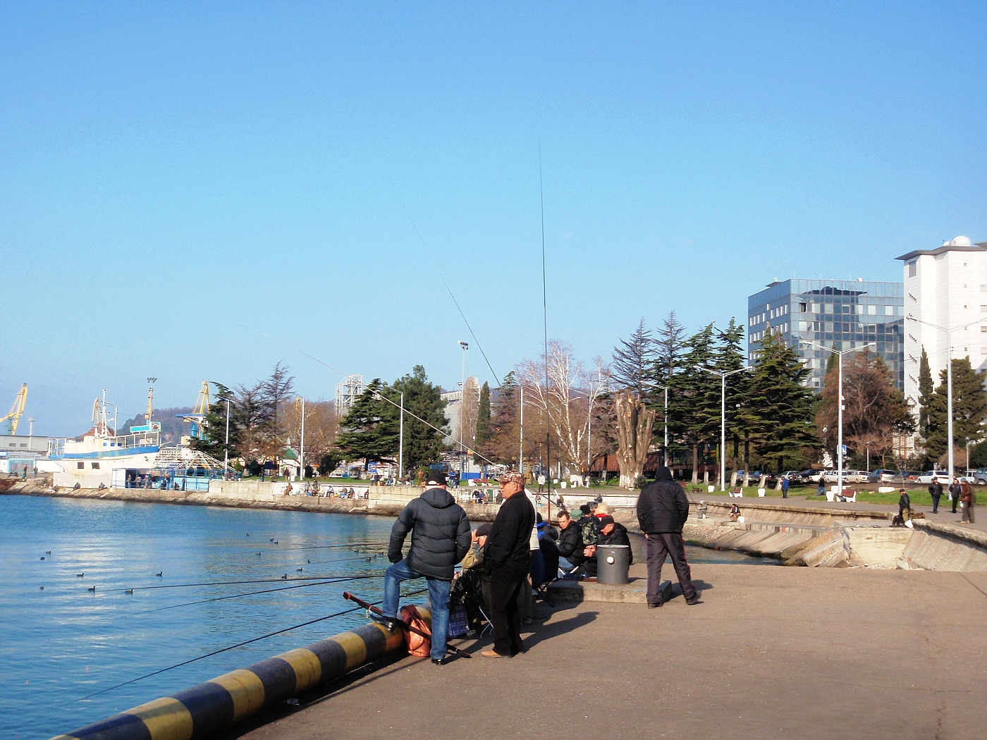 Anglers in the harbour